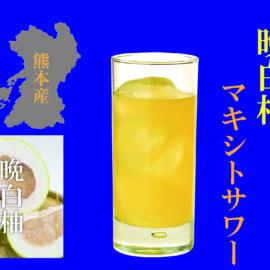 【ビアレストラン】 マキシトサワー